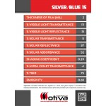SILVER/BLUE 15